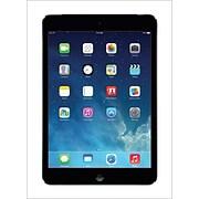Apple (r) iPad mini with Retina display with WiFi; 64GB, Space Gray
