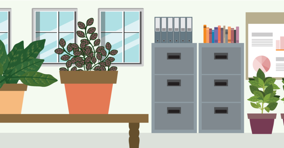 A Little Green Goes A Long Way: Plants Perfect For Your Office U2013 Café Quill