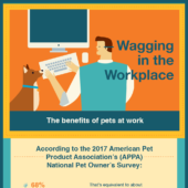 Wagging in the workplace: Benefits of pets at work