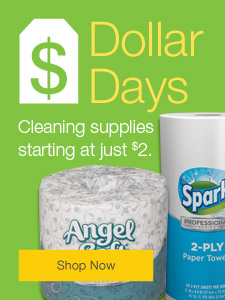 Dollar Days  Cleaning supplies starting at just $2