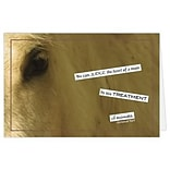 Medical Arts Press® Veterinary Greeting Cards; Horse,  Blank Inside