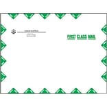Custom 9x12 Gummed First Class Catalog Env.