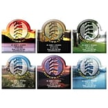 Medical Arts Press® Chiropractic Die-Cut Magnets; 3x3, Spine, Assorted