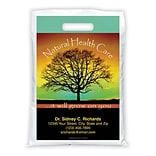 Medical Arts Press® Chiropractic Personalized Full-Color Bags; 9x13, Natural Health Care