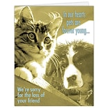 Medical Arts Press® Veterinary Sympathy Cards; Sympathy, Forever Young,  Blank Inside