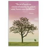 Medical Arts Press® Medical Recycled Postcards; Lone Tree