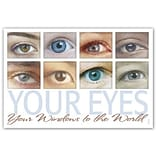 Medical Arts Press® Eye Care Standard 4x6 Postcards; Windows to the World