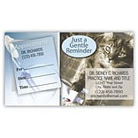 Medical Arts Press® Dual-Imprint Peel-Off Sticker Appointment Cards; Kitten
