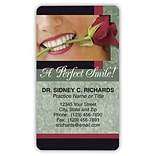 Medical Arts Press® Cosmetic Dentistry 2 x 3-1/2 Glossy Magnets; Perfect Smile