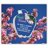 Medical Arts Press® Dental Frame Magnets; Health Blooms