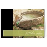 Medical Arts Press® Birthday Greeting Cards; Fountain,  Blank Inside