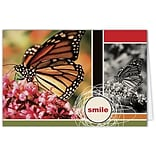 Medical Arts Press® Dental Greeting Cards; Butterfly,  Blank Inside