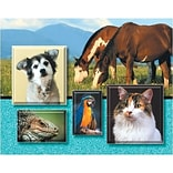 Medical Arts Press® Veterinary Greeting Cards; Animals,  Personalized