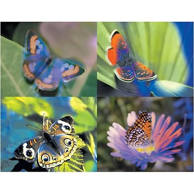 Medical Arts Press® Assorted Laser Postcards; Butterfly
