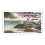 Medical Arts Press® Chiropractic Business/Appointment Cards; Chiro Is Natural