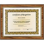 Awards4Work Golden Oak Executive Frame