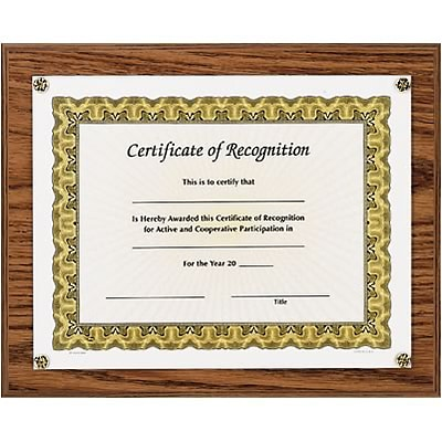 Awards4Work® Executive Plaques; Golden Oak