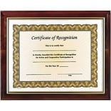 Awards4Work Solid Walnut Executive Frame