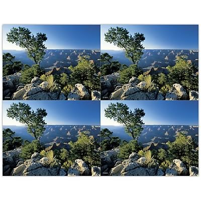 Medical Arts Press® Laser Postcards; Mountain Top