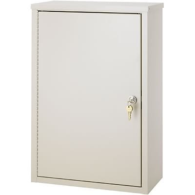 Double-Door Narcotics Cabinet; 24H x 16W x 8D, 2 Adjustable Shelves, Economy