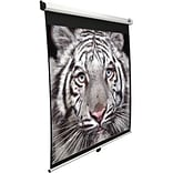 Elite 99 Pull-Down Projector Screen