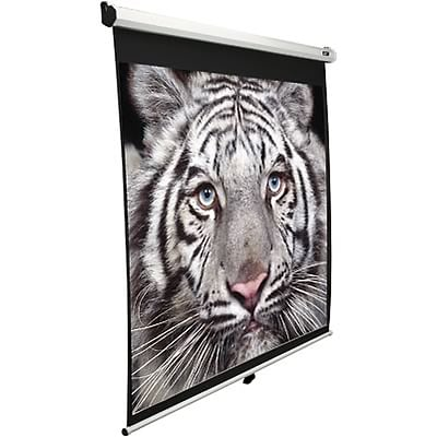 Elite 99 Diagonal, View 70 x 70 Pull-Down Projector Screen
