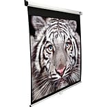 99 Diagonal, View 70x70 Pull-Down Projector Screen