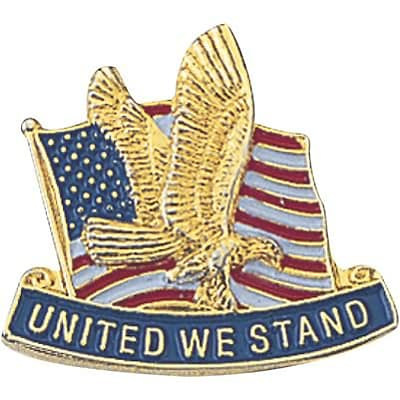 Patriotic Services Lapel Pins; United We Stand
