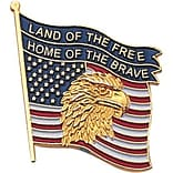 Land of the Free, Home of the Brave Pin
