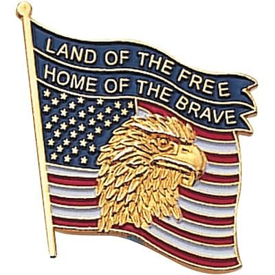 Patriotic Services Lapel Pins; Flag Eagle, Land of the Free, Home of the Brave