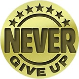 Never Give Up Lapel Pin