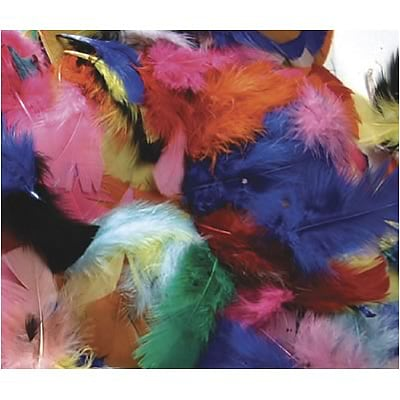 Chenille Kraft® Feathers; Hot Colors