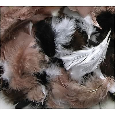 Chenille Kraft® Feathers; Natural Colors