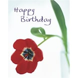 Medical Arts Press® Birthday Greeting Cards; Single Red Flower, Blank Inside