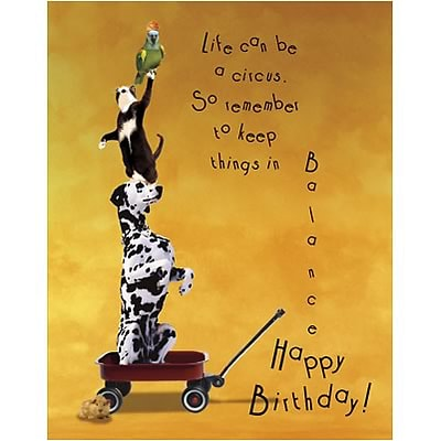 Medical Arts PressR Chiropractic Birthday Cards Animals In Wagon