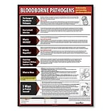 English Bloodborne Pathogens Posters