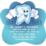 Medical Arts Press® Dental Die-Cut Magnets; Nice Teeth