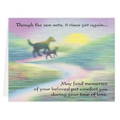 Medical Arts Press® Veterinary Sympathy Cards; Dog and Cat Walking, Blank Inside