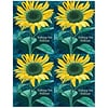 Graphic Image Laser Postcards; Sunflower Wishing Wellness