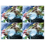 American Eagle/Dove Generic Laser Postcards