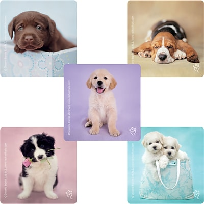 "SmileMakers® Rachael Hale Dogs Stickers; 2-1/2""H x 2-1/2""W, 100/Box"