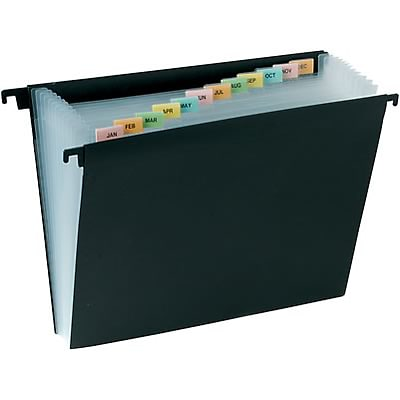 Quill Brand® Hanging Poly Expanding File with 12 Pockets, Letter, Black (11404-QCC)