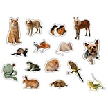 Pets: Photographic Stickers