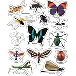 Insects: Photographic Stickers