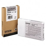 EPSON (60) Light Black Inkjet Cartridge