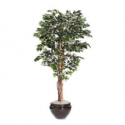 Artificial Ficus Tree, 6ft Overall Height, (Planter Sold Separately)