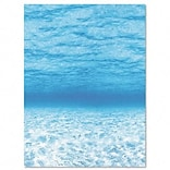 Pacon® Fadeless® Designs Paper; Under The Sea, 48 x 50 Film Wrapped & Boxed