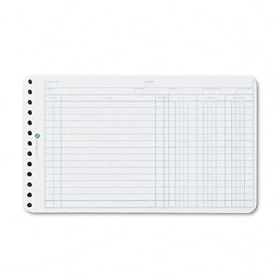 Extra Sheets for 6-Ring Ledger Binder, 100/pack