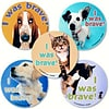 "SmileMakers® I Was Brave Stickers; 2-1/2""H x 2-1/2""W, 100/Box"