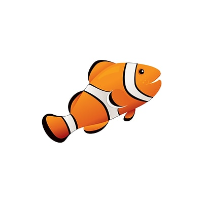 Magnetic Whiteboard Eraser, Clown Fish, 3-1/2 x 3-1/2